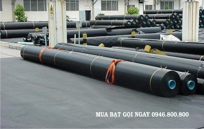 Nhà máy sản xuất cung ứng bạt (bạc) phủ nhựa đen HDPE chống thấm lót đáy ao hồ nguyên cuộn giá rẻ nhất thị trường